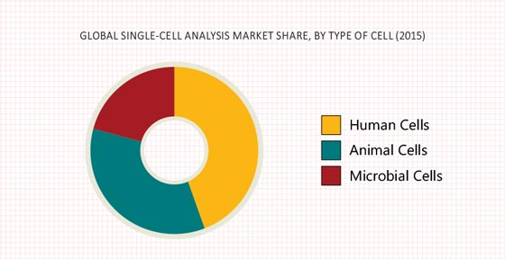 Single Cell Analysis Market